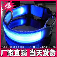 5Pcs/Lot Blue Band Flashing Dog Collars Pet Safety Collars Flashing in Night Free Shipping