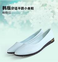 2014 Crocodile pattern  shoes women,women flat heel shoes,casual  women  single shoes,hot women shoes,high quality