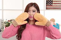 2014 gloves full finger gloves autumn and winter thermal
