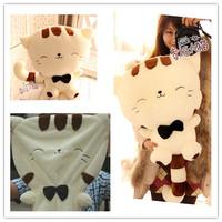 Free shipping 40cm cute cartoon plush toys cat skin, big tail big cat face doll skin, pillow dolls Christmas gifts to send girls