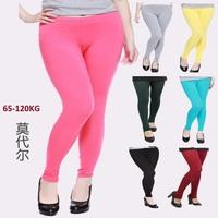 15 colors modal big leggings,women winter pants Plus size jeans leggings candy color leggings fat women pants bodycon pants XXXL