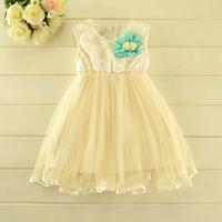 New 2014 Children Boutique dress girls Korean sweet princess fur thicken vest dress baby girls party dress 5pcs/lot 2 colors