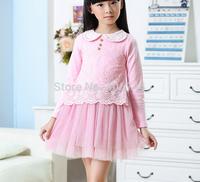 110-150CM,2014girls lace  dress ,GD-CYH02