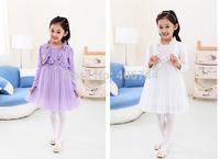 110-150CM,2014 girls fake two pcs  dress ,GD-CYH05