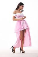 2014  BS-35 Halloween fantasy fairy princess dress clothes garment send a fairy tale queen crown