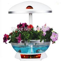 Indoor smart garden factory wholesale OEM service