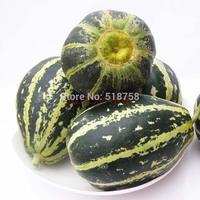 Free Shipping 1Pack Flower honey melon fruit Seeds