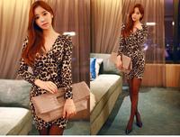 New 2014 Brand Desigual Mini Winter Dress, Leopard Print Bodycon Women Dress,Casual Women Clothing