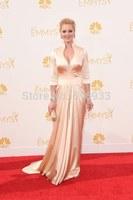 Champage Long sleeve evening dresses vestidos de fiesta 2014 emmy award celebrity dresses prom dress simple elegant WC15