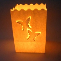 Free shipping 16*11*9cm100pcs/lot HIGH QUALITY! 80g paper Butterfly Luminary Candle bag for wedding, birthday,party ,new year