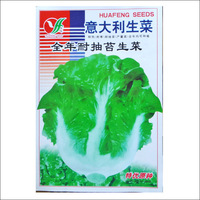 The balcony potted vegetable seed wholesale heat resistant to cold Italian lettuce 500 seeds germinate butter lettuce package