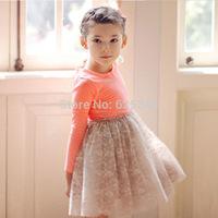 2014 New Autumn Baby Girls Dress Clothes Children Frozen Dress cute long sleeve vestidos de menina 2 colors Dot dresses