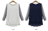 Drop shipping new brand spring autumn full sleeve Chiffon & hoodies shirt for women warm & easy match plus size S M L XL