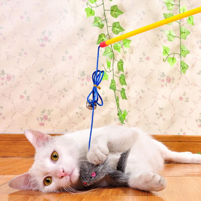 Игрушки для кота своими руками фото 18