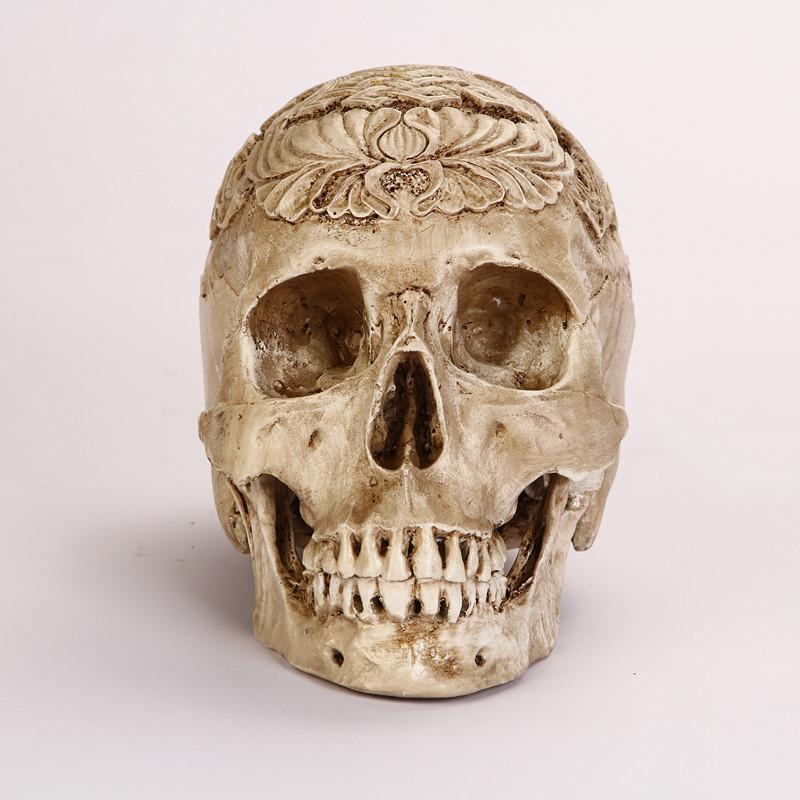 Humano adere 231 os halloween egito cr 226 nio humano resina cabe 231 a cr 226 nio