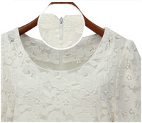 Europe and the United States women's wear the new summer 2013 hollow-out round collar dress lace emb YN052305