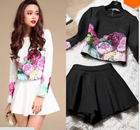 Top Quality 2014 Newest Elegant Flower Print Dress Long Sleeve Autumn Winter Celebrity Runway Dress 2 Piece Trendy Clothes Women