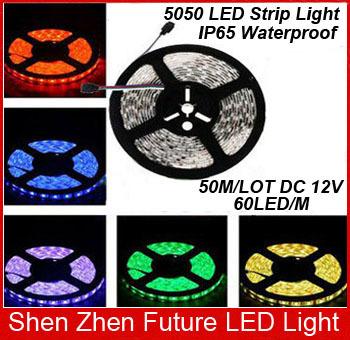 Светодиодная лента Future Led Light 50 /5m 300 5050 SMD 12V 60 /m, FLL-DTR60WF3A10-5050  светодиодная лента 10 50 50 12v 30 smd 5050 v