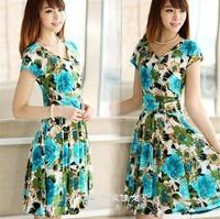 2014 new Korean short-sleeved V-neck printed milk silk long section of beach  dress large size women