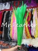 Free shipping 200pcs Apple Green lady amhurst pheasant Feathers 75-80cm Long ringneck pheasant feather