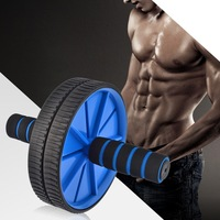 Double-wheel Hand Pusher AB Roller Abdominal Exercise Fitness Equipment Machine Strength Workout Waist Trainer with Mat