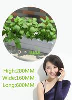 simple Hydroponic Indoor Growing System 60cm 3 pot/site Organic Herbs Flowers Plants Grow Water Sensor