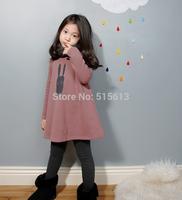 2014 new autumn korean children clothings,princess kids girl warm dress with fleece,print cartoon pattern baby clothes 2color