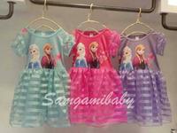 Freeshipping New 2014 Frozen Elsa dress Girl Princess Dress Summer frozen dress Anna and Elsa Costume,baby & kids summer dresses
