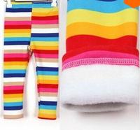 KZ-513  Free shipping 5pcs/lot  girls winter pants children clothing  Kids  legging trousers rainbow stripe pants wholesale