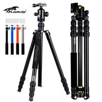 free shipping!!! KAMAY KQ-245 aluminum flash light tripod KAMAY KQ-245 flash light tripod  for Video Camera smartphone monopod