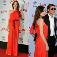 Angelina Jolie Red Carpet Dress Red One Shoulder Celebrity Gown Half Sleeve Party Gown 2014