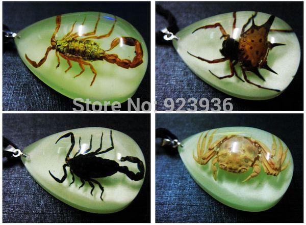 FREE SHIPPING Holiday sales 48 PCS cool unisex real scorpion&carb&angle spider light night mini chic pendants(China (Mainland))