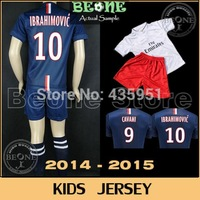 14 15 Kids Embroidery Thai quality IBRAHIMOVIC DAVID LUIZ Soccer jersey boys Football camisetas futbol jerseys / FREE CUSTOMIZE