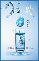 12pcs Pengquan new natural non carbonated soda water, sparkling water, health for your body 550ml