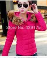 Coat Jacket Women Cotton Down Luxury Large Fur Collar With Hood Coat Female Short Thick Outerwear Plus M -3XL 2014 Autumn Winter
