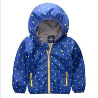 Retail 1PCS  wind and rain in spring autumn boy coat jacket dot kids jackets zipper children's hoodies blue free shipping C108