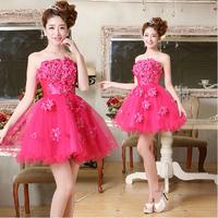 Princess Appliques Strapless Plus size Bridesmaid Dress Short Prom Fuschia Color Women Dress