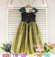 Free Shipping New frozen dress for girl vestidos de menina elsa Frozen ANNA summer dress princess dresses lace cosplay 5pcs/lot