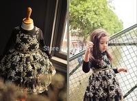 HOT! 2014 Girls new flower lace gauze tutu dress , girls dresses children , 5pcs/lot  LWH22