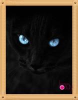 Diy diamond painting set  cross diamond rhinestone painting square drill full rhinestone diamond cat postage free