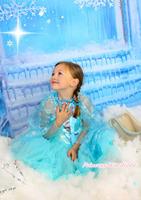 Frozen Princess Elsa Blue Sheer Sleeve Girl Kids Party Costume Dress & Cape 3-8Y C002 C002