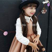 2014 Girls new sweet lapel princess dress , kids girls dress , 5pcs/lot  LWH24