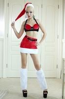 Free Shipping Christmas Costume Princess 3 Pcs Bra+Skirt+Hat Women Sexy Christmas Lady Clothing