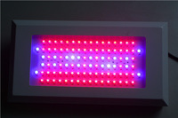 Free shipping 300w led grow light hydroponics plant lighting,bridgelux Lamps bloom Veg full spectrum