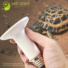 White 150 watt/200 watt Crawler Heating Lamp with Ceramic material Emitting Natural Infrared Ray for Turtle Health care(China (Mainland))