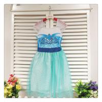 Drop shipping,New 2014 Frozen Elsa dress Girl Princess Dress Summer frozen long dress Elsa Costume,baby & kids party dresses