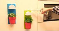 Wall Flower Pot Clouds Rainy Pot / Wall-hung Flowerpot  Blue/Green Rainy Pot