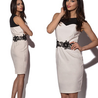 new CLASSIC  EUROPEAN Womens V Neck Bodycon SleeveLESS  Stretchy Back Zipper LACE Slimming Pencil Dress