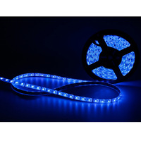 2014 Hot Sale 5M Blue Waterproof 3528 LED Strip Light 300 SMD Flexible Car Lamp, Free Shipping