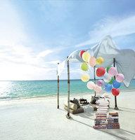 10X10ft Vacation Scenic Photography Studio Background Muslin Computer Printed Digital Cloth Vinyl Backdrop